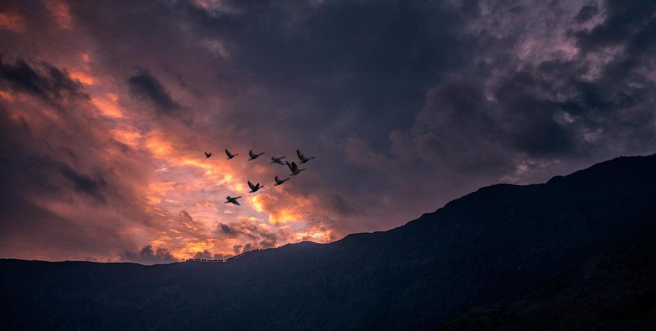 El Hierro, 100 Days of Freedom, Motorrad, Reise, Abenteuer, Reisen, BMW, Kanaren, Teneriffa
